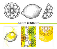 Vector dotted set with lemon, lemon slice and cards isolated on white background. Fruits elements in trendy dotwork style. Summer background and design Stock Photography