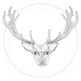 Vector dotwork illustration of deer. For your print, postcard, placard or tattoo sketch Royalty Free Stock Photos