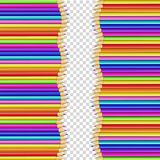 Vector double border made of vertical rows colored wooden pencils. Vector border frame made of vertical rows colored wooden pencils isolated on transparent royalty free illustration