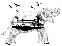 Vector Double exposure, African elephant for your design Stock Photography