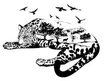 Vector Double exposure, Hand drawn jaguar Stock Photography