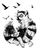 Vector Double exposure, Hand drawn Ring-tailed lemur Stock Photo