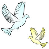 Vector dove Royalty Free Stock Images