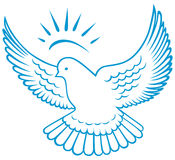 Vector dove symbol. Doodle style Stock Images