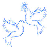Vector Doves. Hand drawn Dove of Peace illustration and dove wit Stock Photos