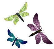 Vector dragonflies Royalty Free Stock Images