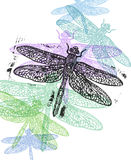 Vector dragonfly in abstract composition. Stock Photos
