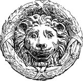 Bas-relief of a lions head. Vector drawing of architectural details on the wall of the palace Stock Photos