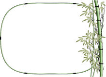 Vector drawing bamboo with border Royalty Free Stock Image