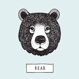Vector Drawing Bear Head. This is vector drawing about animal head Stock Photo