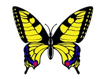 Vector drawing butterfly Royalty Free Stock Images