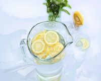Vector drawing carafe with lemon water. stock illustration