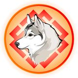 Vector drawing of the dogs head. Vector drawing of the head dog breed Siberian Husky on the background of the pattern of sun Stock Photography