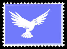 Vector drawing dove Royalty Free Stock Photography
