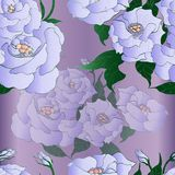 Vector drawing. Eustoma - flowers and buds. Decorative composition - a bouquet of flowers.Wallpaper. Use printed materials, signs royalty free stock photography