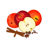 Vector drawing of a few apples with spice. Yellow and red apple fruits  anise cinnamon Group  tasty  colorful design for. Vector drawing of a few apples with Royalty Free Stock Photos