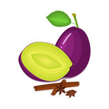 Vector drawing of a few plums with spice. Purple plum fruits whole, half, slice and anise cinnamon Group  tasty. Vector drawing of a few plums with spice. Purple Royalty Free Stock Photo