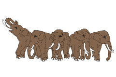 Vector drawing of group of five elephants on the  backgr Royalty Free Stock Image