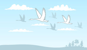 Vector drawing of a group of swans flying over the field among the clouds against the blue sky. Eps-8 Royalty Free Stock Image