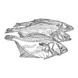 Vector drawing hand fish Royalty Free Stock Photo
