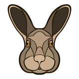 Vector drawing head of a rabbit, hare Stock Photo