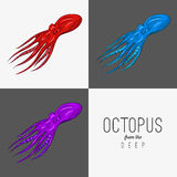 Vector drawing illustration of octopus with curling tentacles Royalty Free Stock Photography