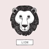 Vector Drawing Lion Head. This is vector drawing about animal head Royalty Free Stock Photos
