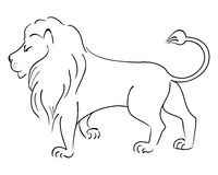 Vector drawing Lion. Stock Photography