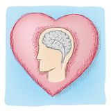 Head and heart connected organs Royalty Free Stock Image