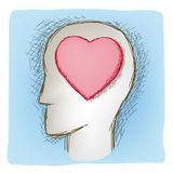 Head and heart connected organs Stock Photo