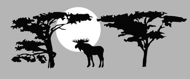 Vector  drawing moose Royalty Free Stock Photography