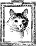 A sketch portrait of a domestic cat royalty free illustration