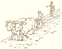 Vector drawing. Primitive agriculture. Peasants treated field Stock Photography