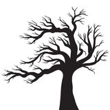 Vector drawing of the tree Stock Photo