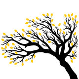 Vector drawing of the tree. Vector illustration of the tree silhouette with leaves Royalty Free Stock Image