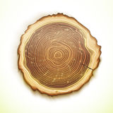 Vector drawing tree stump Royalty Free Stock Photography