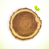 Vector drawing tree stump with young leaf Stock Photos