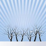 Vector drawing of trees with snow Stock Photos