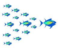Vector image of tuna, shoal of fish. vector illustration
