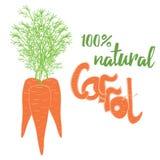 Vector drie wortelen op witte achtergrond met groen lint Royalty-vrije Stock Fotografie