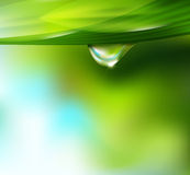 Vector drop of dew on a background. Of sky and greenery Stock Photo