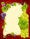 Vector druivenframe met fles royalty-vrije illustratie