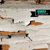 Vector dry Wood Color texture. Background Stock Images