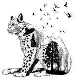 Vector Dubbele blootstelling, lynx, het wildconcept Royalty-vrije Stock Fotografie