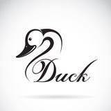 Vector of a duck design. Stock Photo