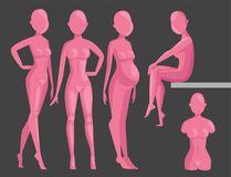 Vector dummy mannequin model poses male and female beautiful attractive sculpture plastic figure silhouette. Vector dummy mannequin model. Different poses Stock Photos