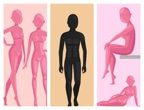 Vector dummy mannequin model poses male and female beautiful attractive sculpture plastic figure silhouette. Vector dummy mannequin model. Different poses Stock Photo