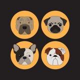Vector e icono determinados del dogo del perro y del perrito Fotografía de archivo