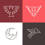 Vector eagle and falcon linear logos Royalty Free Stock Photos