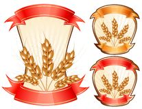 Vector ears of wheat. Stock Photo